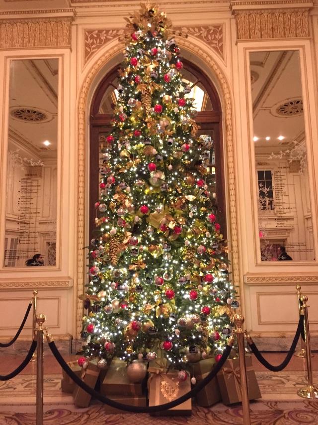 Plaza Hotel Tree